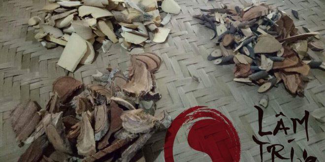 Lâm Trí Đường 2 660x330 - Niềm Vui Khi Siêu Âm Của Bệnh Nhân Ở Đình Bảng, Từ Sơn, Bắc Ninh